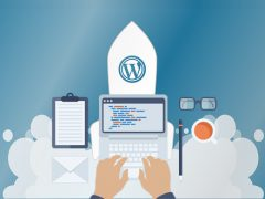 Wordpress CMS Hosting
