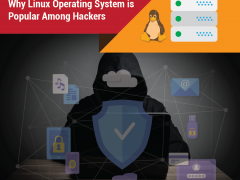 Why Linux Operating System is Popular among Hackers