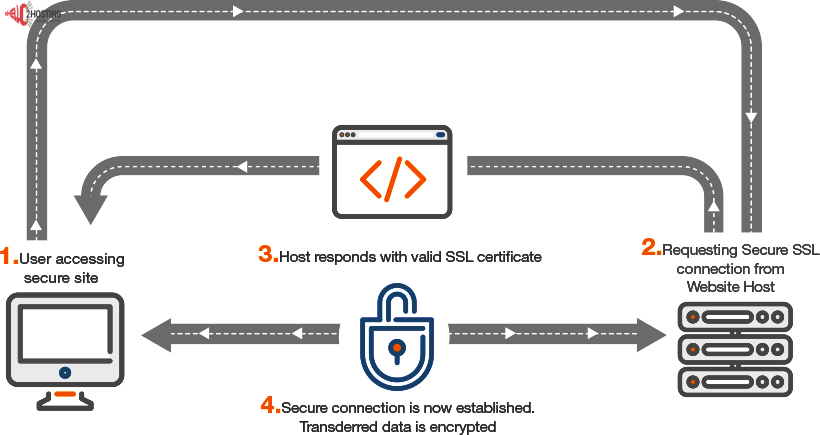 Paid or Free SSL Certificate