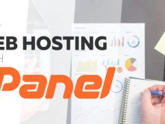 Information about Web Hosting Control Panel